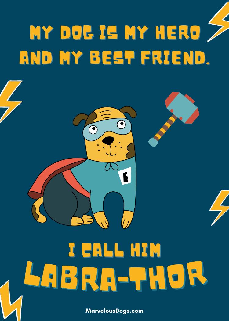 labrador dog puns